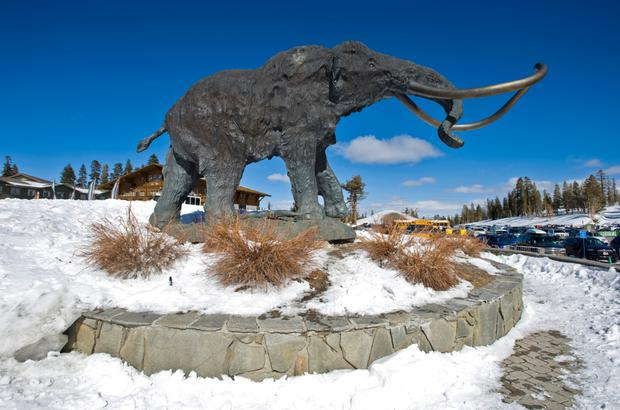 Mammoth Moutain