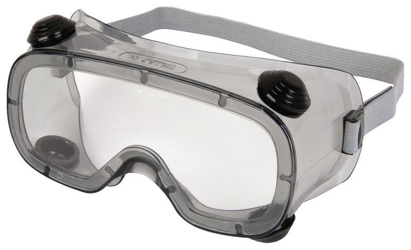 Delta Plus Polycarbonate Goggles   Seton