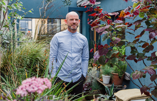Mark Grehan: 'Look out for plants that would work well beside the seaside — they are used to strong breezes and can endure windy balcony conditions'