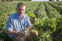 Potato farmer David Rodgers shows the poor growth in his patatoes due to the lack of rain, at his farm in Ballyboughal in North County Dublin. Picture:Arthur Carron