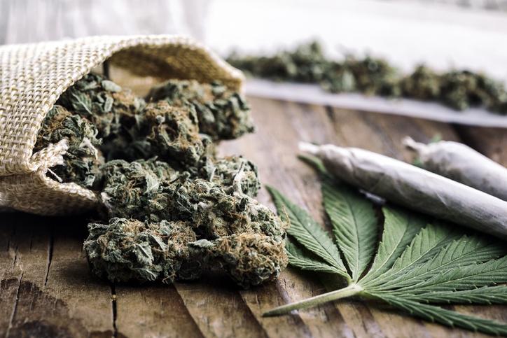 3 empresas mexicanas que hacen negocios con la marihuana