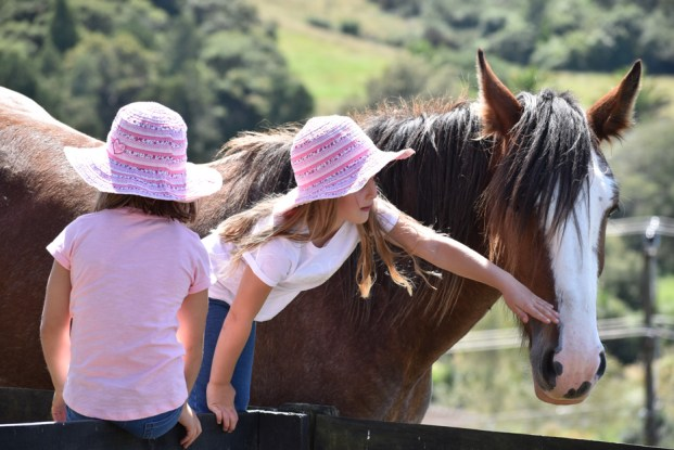 Photo of two girls and a horse, taken with the AF-P DX NIKKOR 70-300mm f/4.5-6.3G ED lens