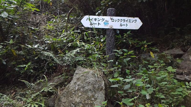 f:id:Daisuke-Tsuchiya:20160521231422j:plain