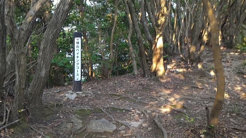 f:id:Daisuke-Tsuchiya:20160521232954j:plain