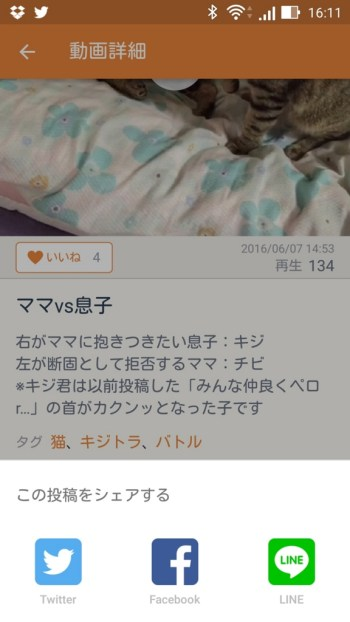 f:id:Daisuke-Tsuchiya:20160627105243j:plain