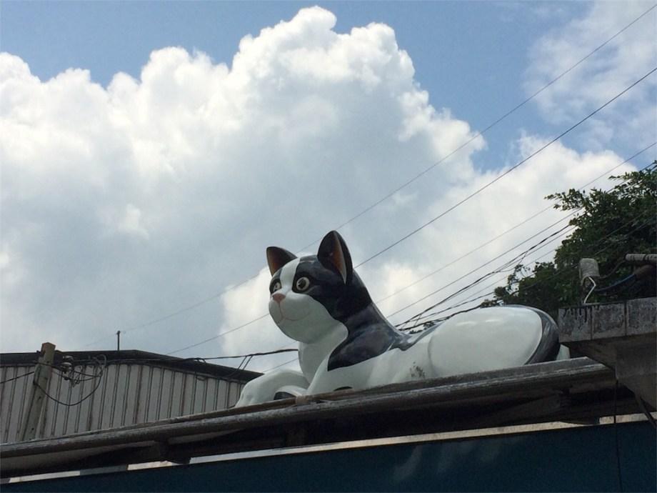 台湾 観光 猫村