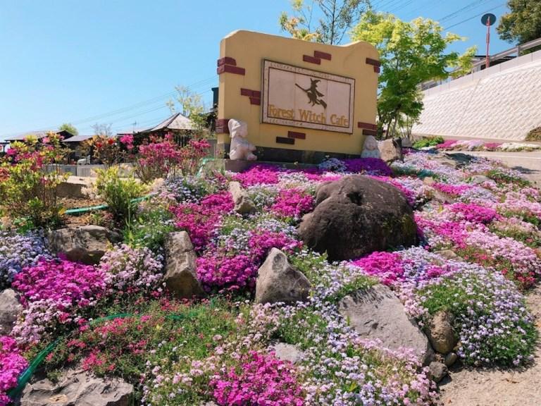 森の魔女カフェのお花