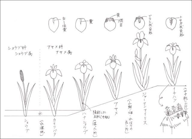 f:id:kyou2:20130701173820j:image:w640