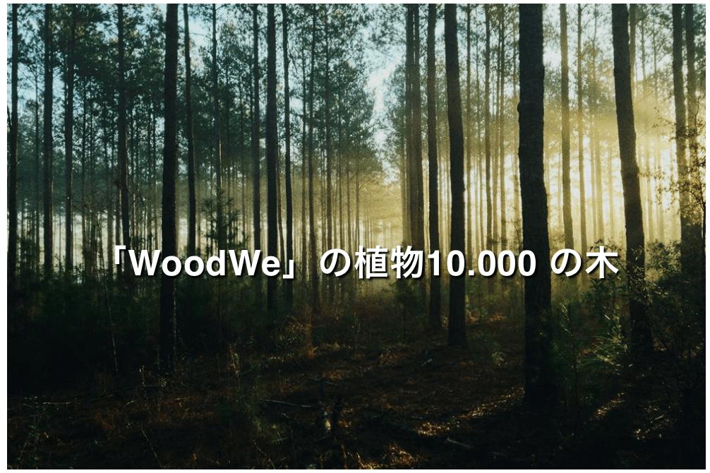 WOODWEのHPより