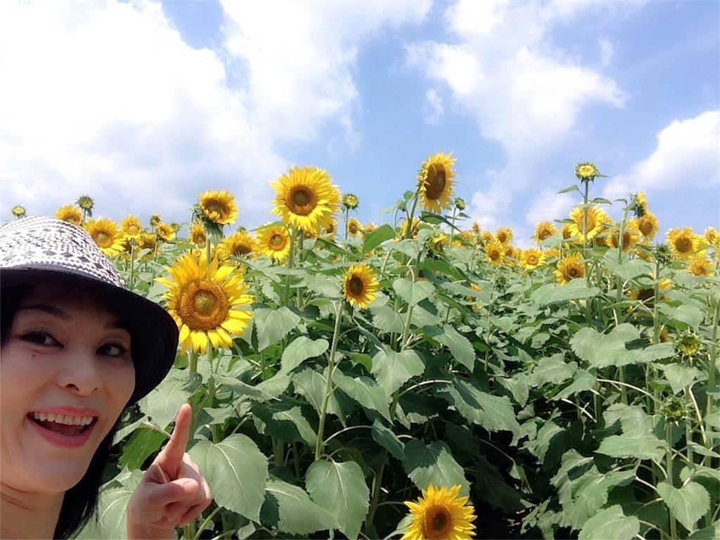 f:id:mika-shimosawa:20160814171303j:image