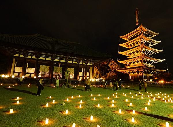 なら燈花会|興福寺五重塔と東金堂