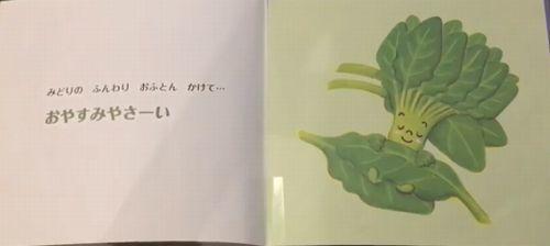 野菜のブロッコリー君が寝るところ