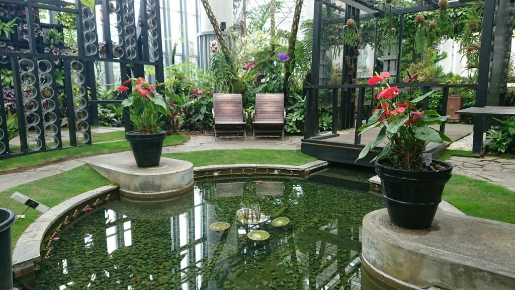 星の植物館内庭園エリア