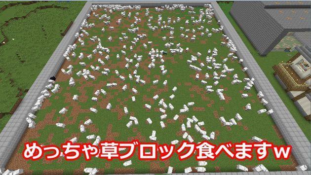 羊牧場での草ブロックの使い方