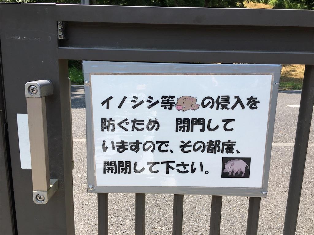 f:id:saekichi:20170730164252j:image