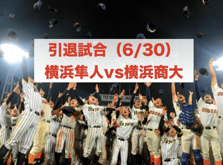 f:id:summer-jingu-stadium:20170627182030p:plain