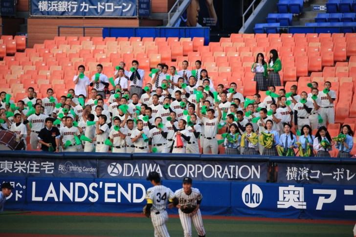 f:id:summer-jingu-stadium:20170630212044j:plain