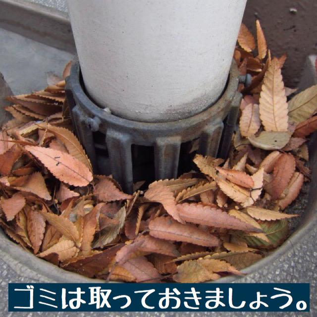 排水口の詰まり写真