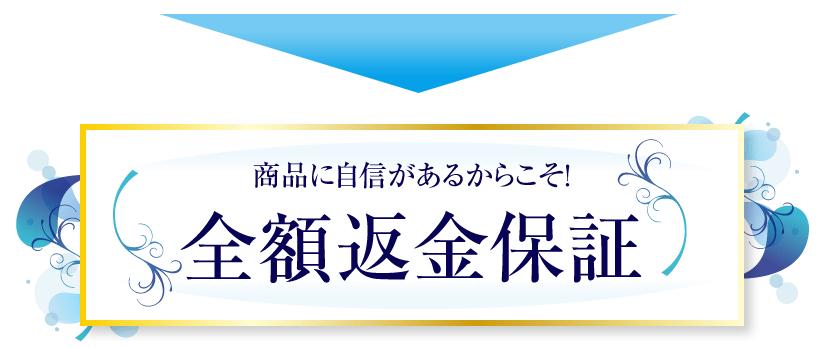 f:id:tokozo123:20181105234125p:plain