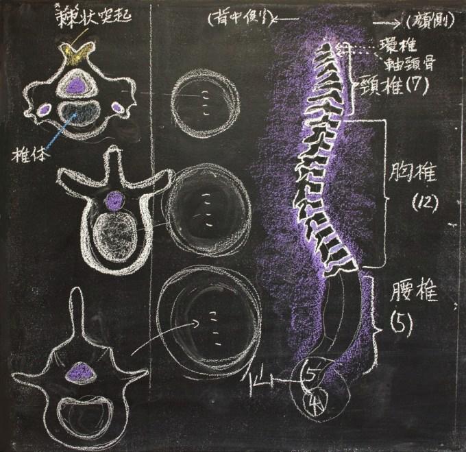 f:id:tokyokenji-teacher:20191217102936j:plain