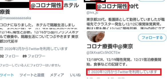 f:id:tokyotsubamezhenjiu:20210224235514p:plain