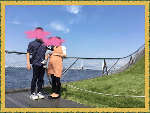 f:id:uchinokosodate:20180530094109p:image