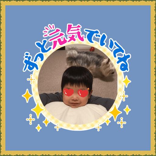 f:id:uchinokosodate:20180605123059p:image