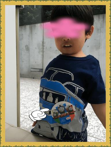 f:id:uchinokosodate:20180801043625p:image