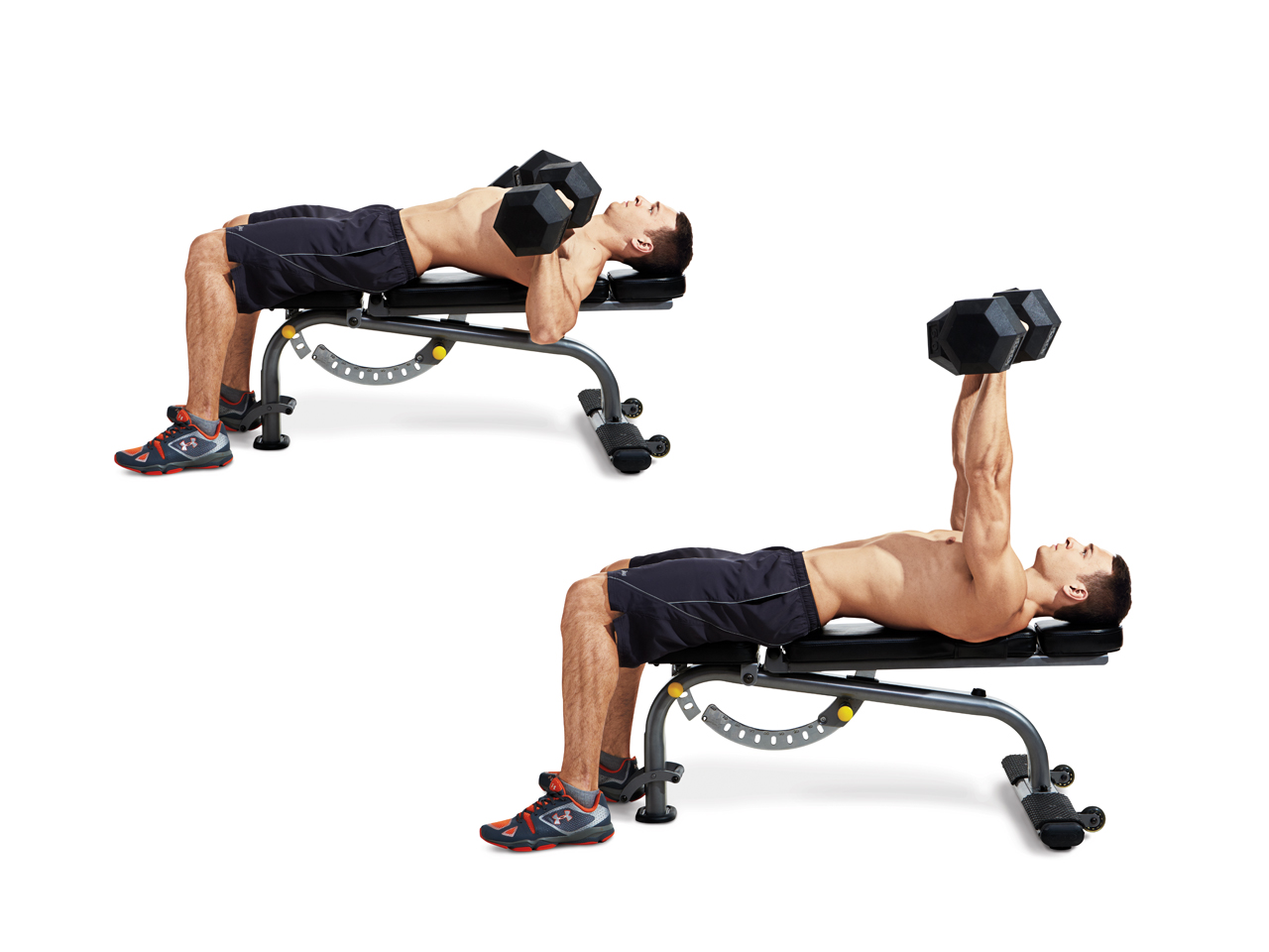 Dumbbell Bench Press Video Watch Proper Form Get Tips