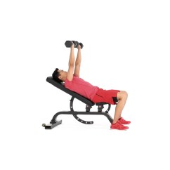 Gym Bench Press Chair Office Luxury How To Properly Execute A Incline Dumbbell Muscle Fitness