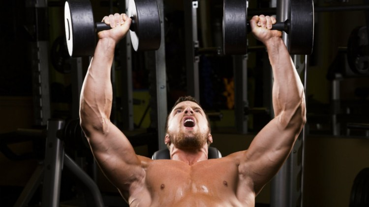 Image result for Training body