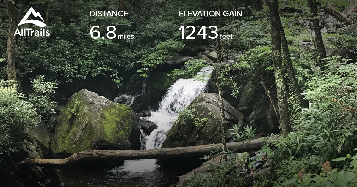 Hiking to grotto falls is a unique experience as it's the only waterfall in the smokies you can stand behind. Trillium Gap Trail To Grotto Falls Tennessee Alltrails