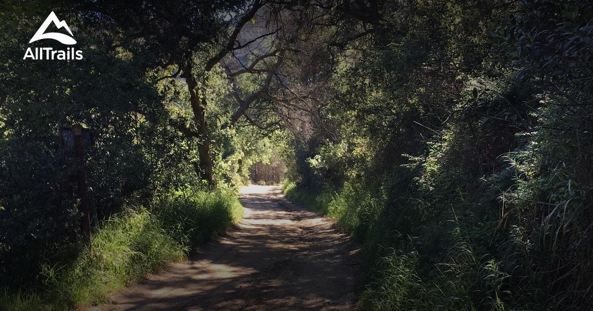 Best Trails In Limestone Canyon Regional Park  California