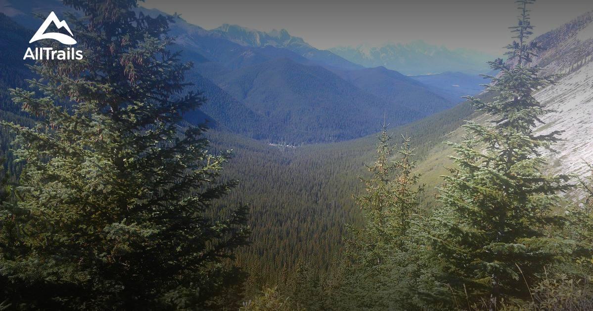 Best Trails in Jasper National Park  1399 Photos  687