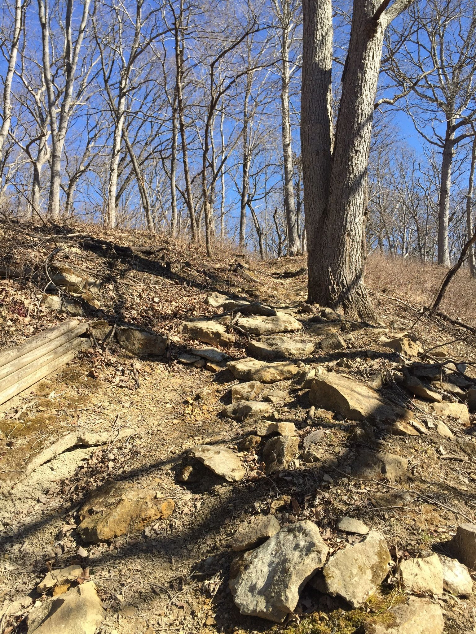 Siloam Springs State Park  Illinois State Parks