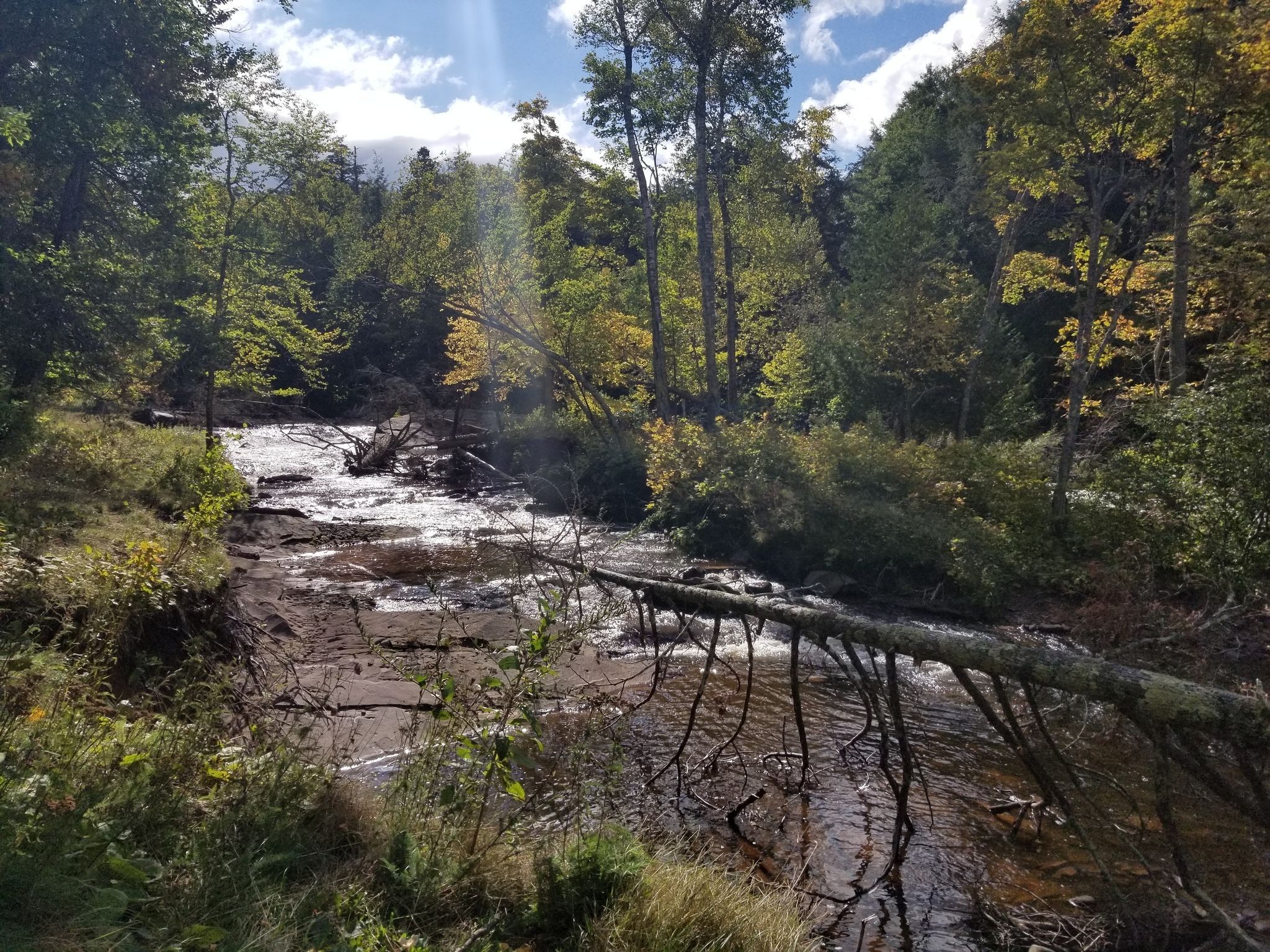 Best Camping Trails In Porcupine Mountains Wilderness