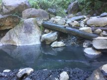 Hot Springs Trails In Olympic National Park Alltrails