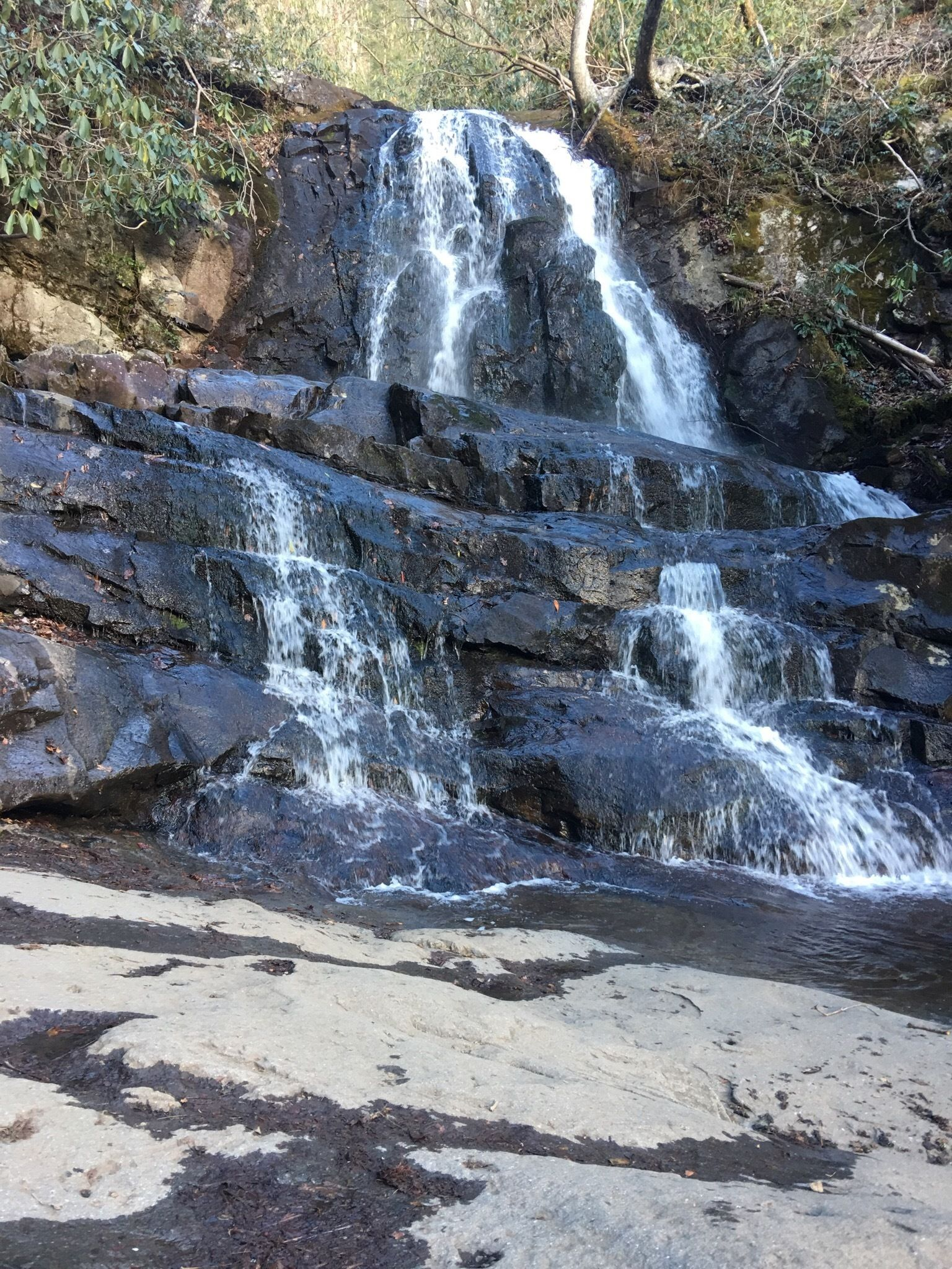Laurel Falls and Cove Mountain  Tennessee  AllTrails