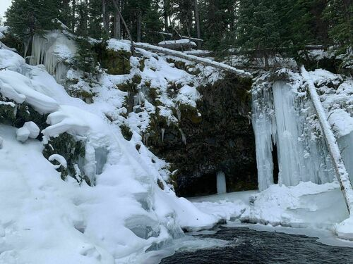 For those who want hikes that aren't too long. Photos Of Grotto Falls Trail Montana Alltrails