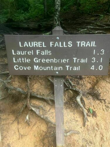 The laurel falls trailhead is located 3.8 miles west of the sugarlands visitor center on little river road. Gatlinburg Tennessee Beste Route Zum Teilweise Befestigt Alltrails