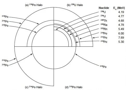 Tesla Radio Schematics, Tesla, Free Engine Image For User