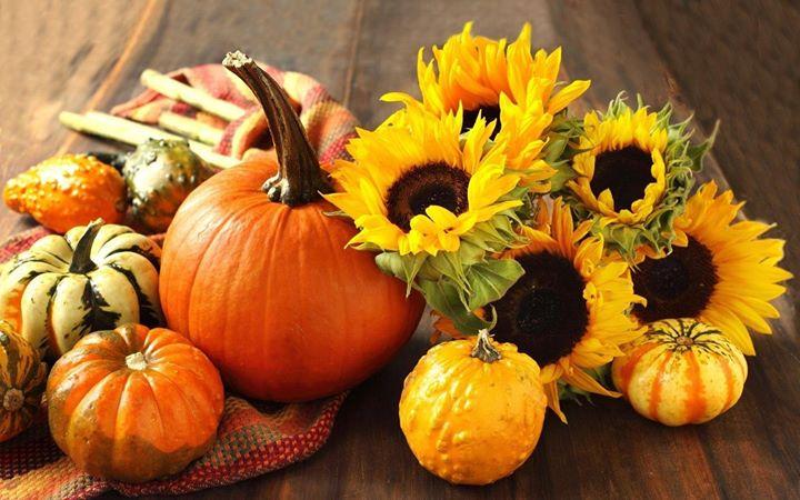 Fall Pumpkin Wallpaper Desktop Festival Of Arts Amp Crafts Forest View High School