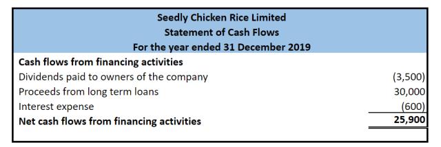 Seedly Chicken Rice Cash Flow Statement financing
