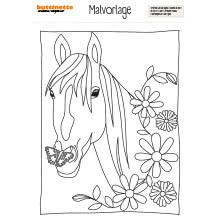 Malvorlage Pferd - buttinette Bastelshop