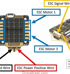 typical connections on a 4in1 esc [ 1817 x 741 Pixel ]