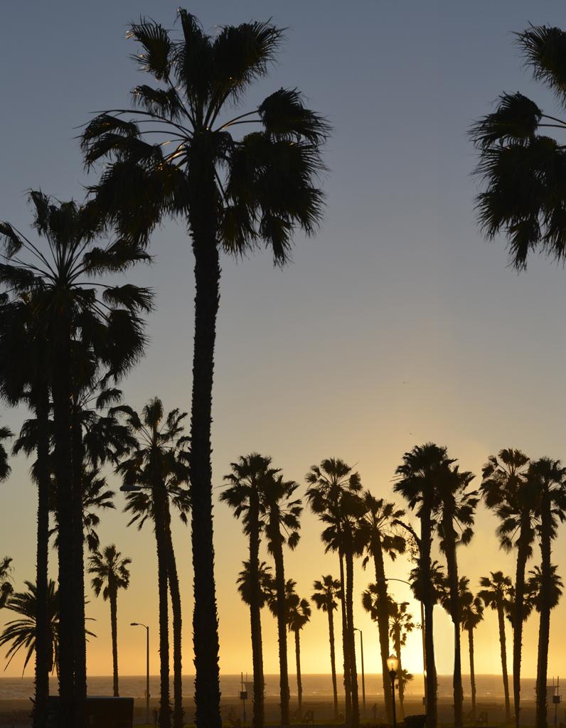 Coucher De Soleil Los Angeles : coucher, soleil, angeles, Adresses, Déco, Angeles, Meilleures, Décoration
