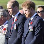 Le prince Harry bientôt de retour en Angleterre : pourquoi va-t-il retrouver son frère Wiliam ?