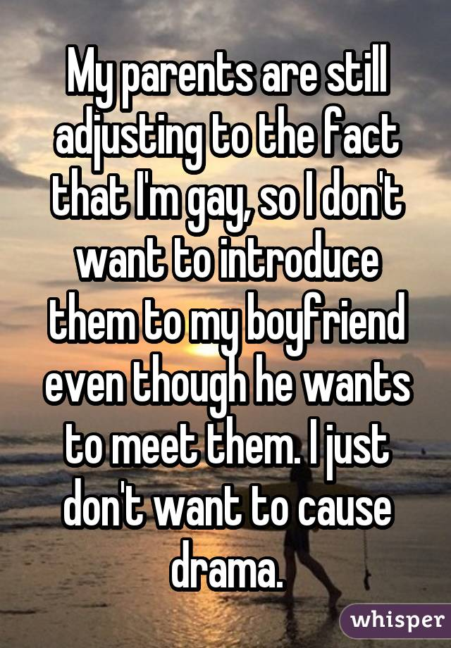 My parents are still adjusting to the fact that I'm gay, so I don't want to introduce them to my boyfriend even though he wants to meet them. I just don't want to cause drama.