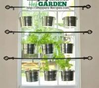 Hanging Kitchen Herb Garden   Hometalk