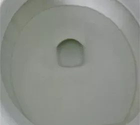 Get Rid of the Lime Scale Ring in the Toilet Bowl  Hometalk